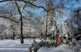 Winter im Park 08.12. 2012_103.jpg
