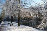 Winter im Park 08.12. 2012_111.jpg