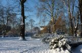 Winter im Park 08.12. 2012_118.jpg